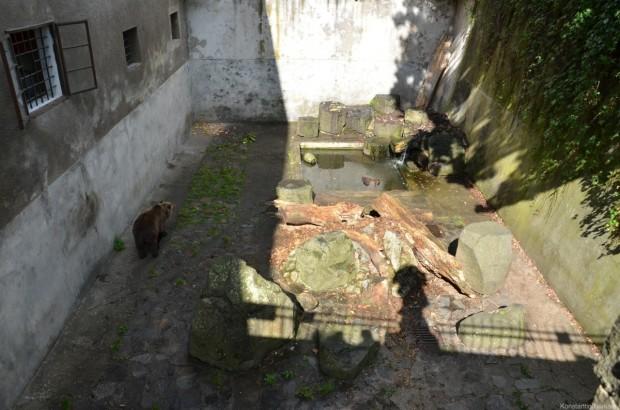 Медведевы ямы